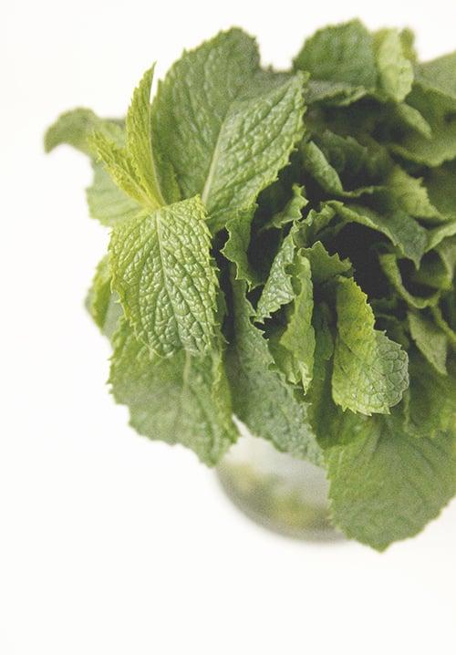 Fresh Mint Froyo | The Fauxmartha