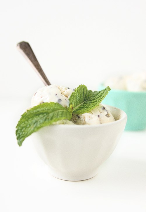 Fresh Mint Froyo | The Fauxmartha