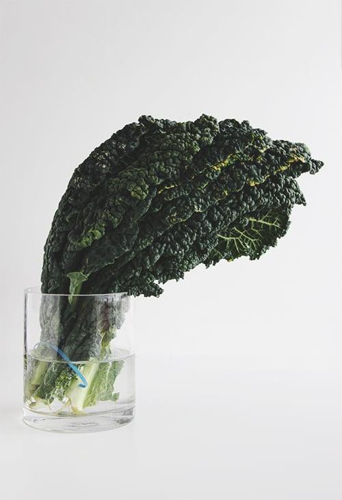 Squash Kale Autumn Salad | The Fauxmartha