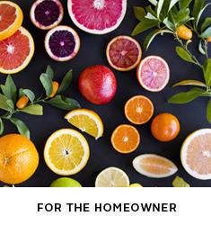 ideas_homeowner_
