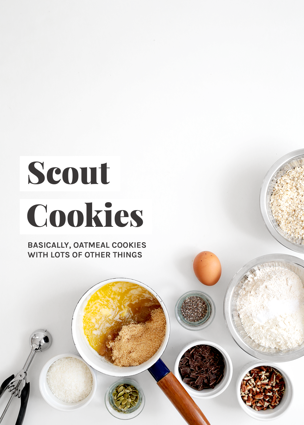 Scout Cookies from The Faux Martha